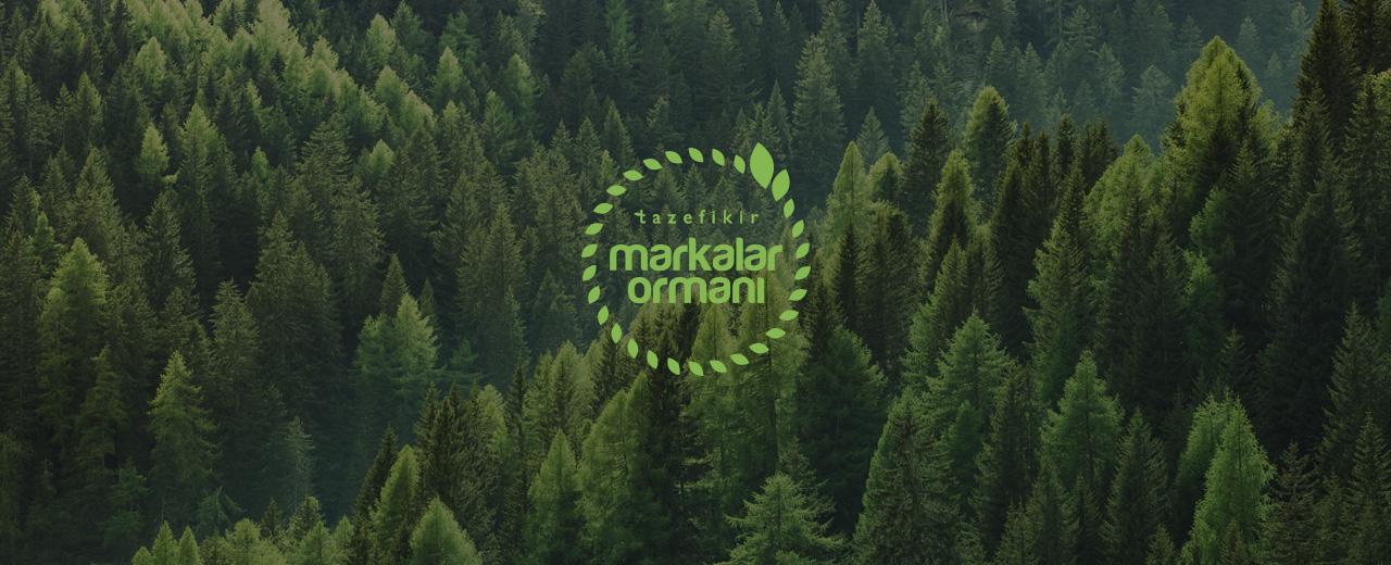 Markalar ormanı