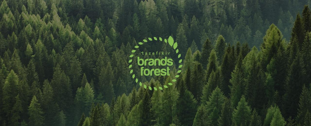 brandsforestpage