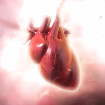 Kalbiniz Konuşuyor